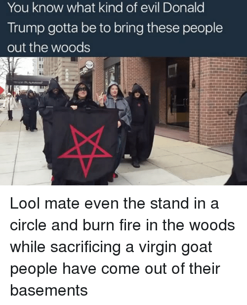 Memes, Virgin, and Goat: You know what kind of evil Donald  Trump gotta be to bring these people  out the woods Lool mate even the stand in a circle and burn fire in the woods while sacrificing a virgin goat people have come out of their basements