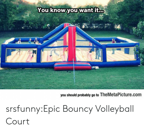 Volleyball: You know you want it..  you should probably go to TheMetaPicture.com srsfunny:Epic Bouncy Volleyball Court