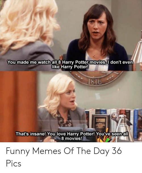 Funny, Harry Potter, and Love: You made me watch all 8 Harry Potter movies.I don't even  like Harry Potter!  1816  PAWNER  That's insane! You love Harry Potter! You've seenall  8 movies! Funny Memes Of The Day 36 Pics