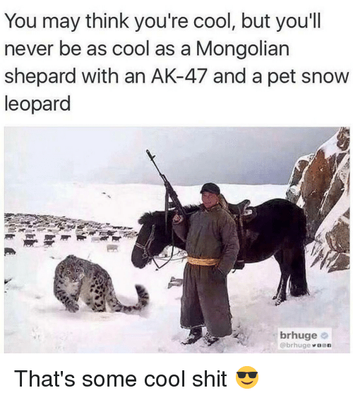 Memes, Ak-47, and 🤖: You may think you're cool, but you'll  never be as cool as a Mongolian  Shepard with an AK-47 and a pet snow  leopard  brhuge  @brhuge  n That's some cool shit 😎