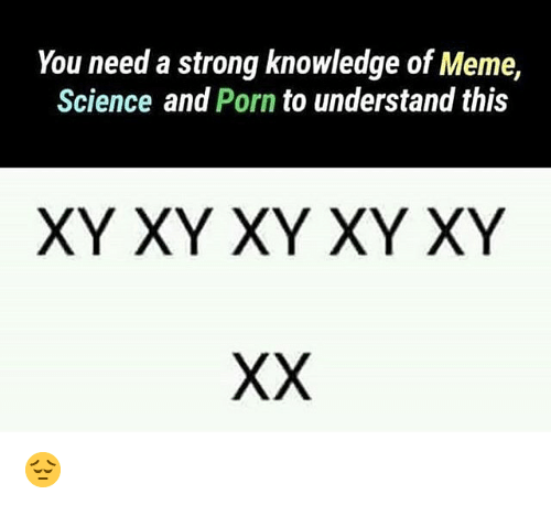 Meme, Memes, and Porn: You need a strong knowledge of Meme,  Science and Porn to understand this  XY XY XY XY XY 😔