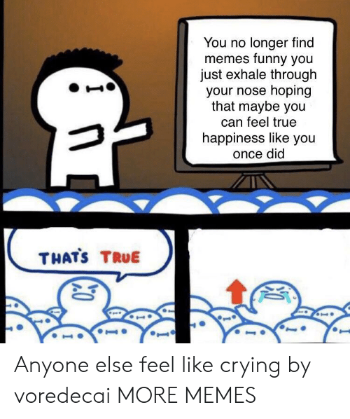 Memes Funny: You no longer find  memes funny you  just exhale through  your nose hoping  that maybe you  can feel true  happiness like you  once did  THATS TRUE  10  I Anyone else feel like crying by voredecai MORE MEMES