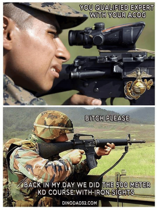 Back in My Day: YOU QUALIFIED  EXPERT  WITH YOUR ACOG  BITCH PLEASE  BACK IN MY DAY WE DID THE 500 METER  KD COURSE WITH-IRON SIGHTS  DINODAD32.COM