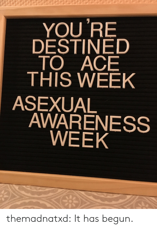 Target, Tumblr, and Asexual: YOU 'RE  DESTINED  TO ACE  THIS WEEK  ASEXUAL  AWARENESS  WEEK themadnatxd:  It has begun.
