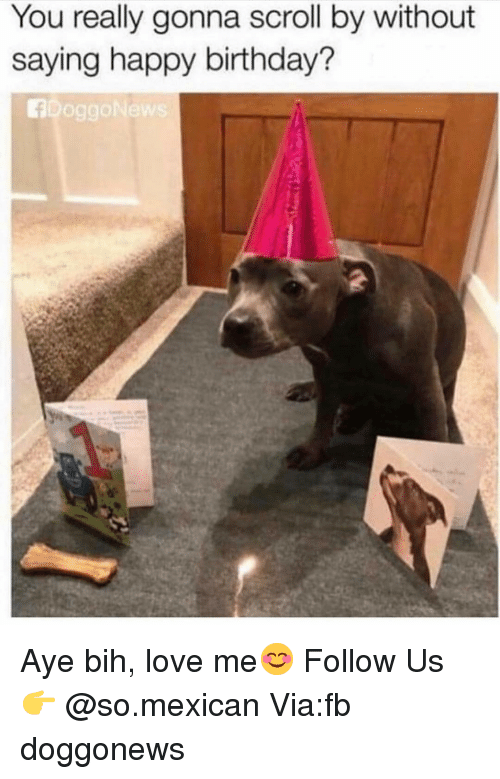 Birthday, Love, and Memes: You really gonna scroll by without  saying happy birthday? Aye bih, love me😊 Follow Us👉 @so.mexican Via:fb doggonews