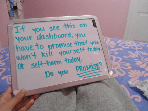 promise: you see this on  Your dashboard, you  have to promise that you  wont kiit yourset4  or self-harm today  Mi  Do you PROMİSE?