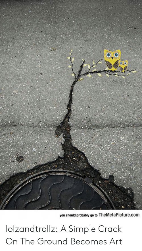 Tumblr, Blog, and Http: you should probably go to TheMetaPicture.com lolzandtrollz:  A Simple Crack On The Ground Becomes Art