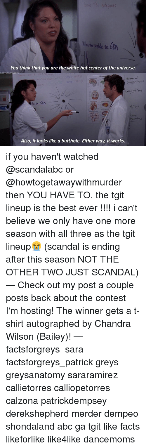 Abc, Facts, and Memes: You think that you are the white hot center of the universe.  Huma  Also, it looks like a butthole. Either way, it works. if you haven't watched @scandalabc or @howtogetawaywithmurder then YOU HAVE TO. the tgit lineup is the best ever !!!! i can't believe we only have one more season with all three as the tgit lineup😭 (scandal is ending after this season NOT THE OTHER TWO JUST SCANDAL) — Check out my post a couple posts back about the contest I'm hosting! The winner gets a t-shirt autographed by Chandra Wilson (Bailey)! — factsforgreys_sara factsforgreys_patrick greys greysanatomy sararamirez callietorres calliopetorres calzona patrickdempsey derekshepherd merder dempeo shondaland abc ga tgit like facts likeforlike like4like dancemoms