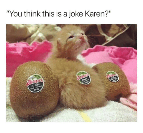"Memes, 🤖, and Gre: ""You think this is a joke Karen?""  en  Gre  4030"