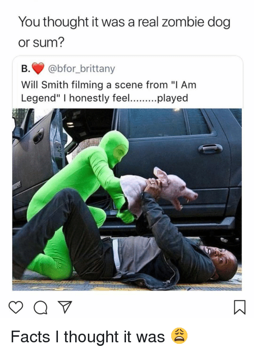 """Facts, Memes, and Will Smith: You thought it was a real zombie dog  or sum?  B.@bfor_brittany  Will Smith filming a scene from """"I Am  Legend"""" I honestly feeplayed Facts I thought it was 😩"""
