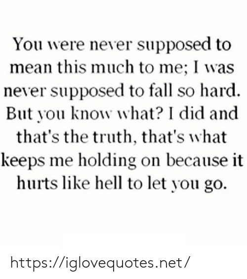 Fall, Mean, and Hell: You were never supposed to  mean this much to me; I was  never supposed to fall so hard  But you know what? I did and  that's the truth, that's what  keeps me holding on because it  hurts like hell to let you go. https://iglovequotes.net/