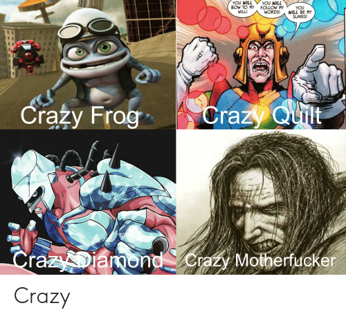 Crazy, Crazy Frog, and Frog: YOU WILL  BOW TO MY  WILL!  YOU WILL  FOLLOW MY  WORDS!  YOU  WILL BE MY  SLAVES!  Crazy Frog  Crazy Quilt  CrazyDiamond erazy Motherfucker Crazy