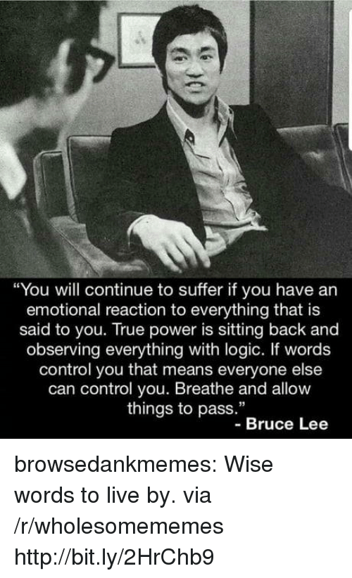 "Logic, True, and Tumblr: ""You will continue to suffer if you have an  emotional reaction to everything that is  said to you. True power is sitting back and  observing everything with logic. If words  control you that means everyone else  can control you. Breathe and allow  things to pass.""  -Bruce Lee browsedankmemes:  Wise words to live by. via /r/wholesomememes http://bit.ly/2HrChb9"