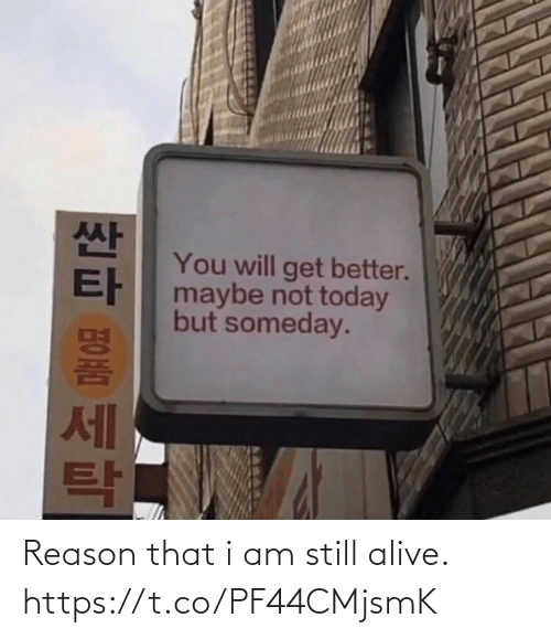 Alive, Today, and Reason: You will get better.  maybe not today  but someday.  세 Reason that i am still alive. https://t.co/PF44CMjsmK