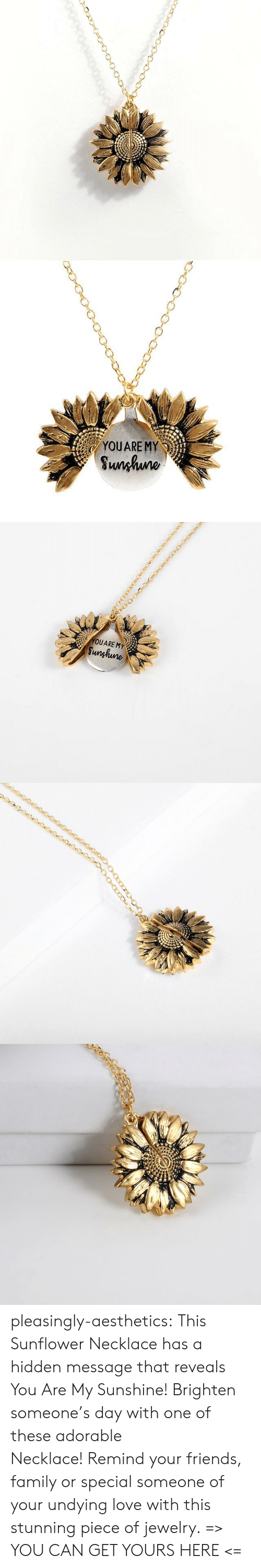 remind: YOUARE MY  Sunhuno   YOUARE MY  Sunghune pleasingly-aesthetics: This Sunflower Necklace has a hidden message that reveals You Are My Sunshine! Brighten someone's day with one of these adorable Necklace! Remind your friends, family or special someone of your undying love with this stunning piece of jewelry. => YOU CAN GET YOURS HERE <=