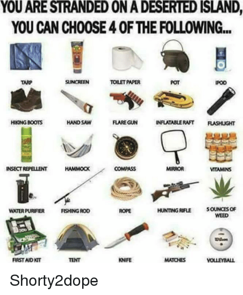 hand saw: YOUARESTRANDEDONADESERTED ISLAND,  YOU CAN CHOOSE40F THE FOLLOWING...  TOILET PAPER  TARP  HAND SAW  HNONGBOOTS  FLARE GUN  INFLATABLE RAFT  INSECT REPELLENT  HAMMoax  HUNTING RIFLE  5OUNOESOF  WATERPURIFIER  RSHINGROD  WVEED  FIRST NDNT Shorty2dope