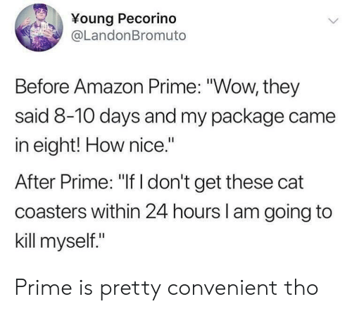 "Amazon Prime: Young Pecorino  @LandonBromuto  Before Amazon Prime: ""Wow, they  said 8-10 days and my package came  in eight! How nice.""  After Prime: ""If I don't get these cat  coasters within 24 hours l am going to  kill myself."" Prime is pretty convenient tho"
