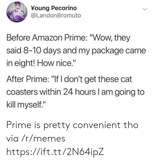 "Amazon Prime: Young Pecorino  @LandonBromuto  Before Amazon Prime: ""Wow, they  said 8-10 days and my package came  in eight! How nice.""  After Prime: ""If I don't get these cat  coasters within 24 hours l am going to  kill myself."" Prime is pretty convenient tho via /r/memes https://ift.tt/2N64ipZ"