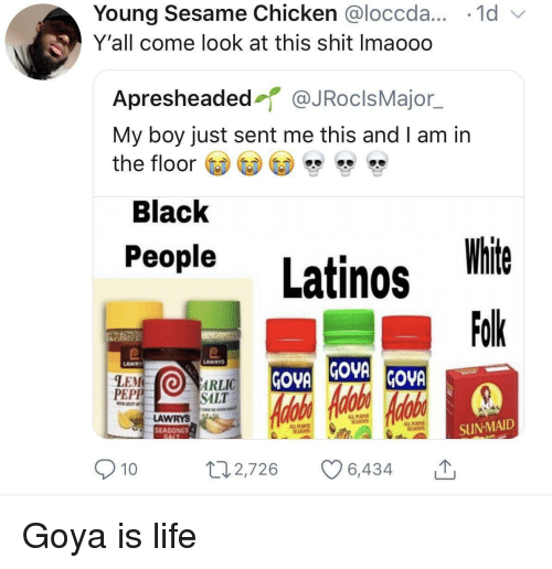 Goya, Latinos, and Life: Young Sesame Chicken @loccda...-1 d  Y'all come look at this shit Imaooo  Apresheaded@JRoclsMajor  My boy just sent me this and I am in  the floor >  Black  People Latinos t  White  Folk  LAWRYS  LAWRY  LEM  PEP  OARLIC  SALT  LAWRYS  SEASONED  SUN-MAID  9  10 Goya is life