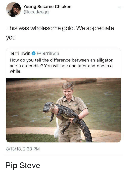 Terri: Young Sesame Chicken  @loccdawgg  This was wholesome gold. We appreciate  you  Terri Irwin @Terr.Irwin  How do you tell the difference between an alligator  and a crocodile? You will see one later and one in a  while.  8/13/18, 2:33 PM Rip Steve