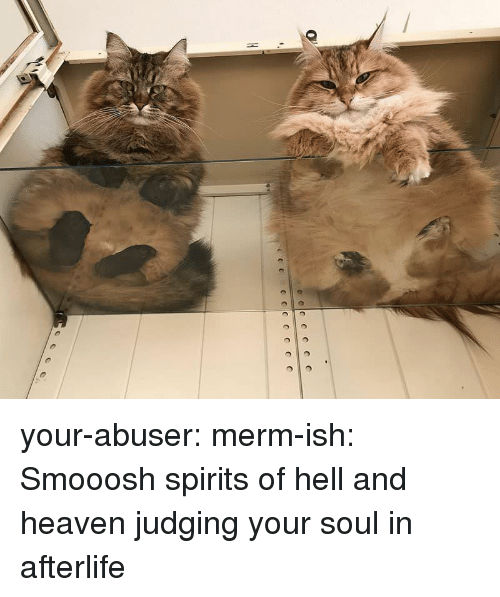 Heaven, Tumblr, and Blog: your-abuser:  merm-ish: Smooosh spirits of hell and heaven judging your soul in afterlife