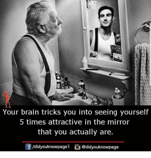 Memes, Brain, and Mirror: Your brain tricks you into seeing yourself  5 times attractive in the mirror  that you actually are.  f/didyouknowpagel @didyouknowpage