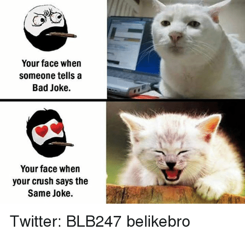 A Bad Joke: Your face when  Someone tells a  Bad Joke.  Your face when  your crush says the  Same joke. Twitter: BLB247 belikebro