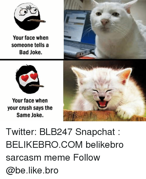 A Bad Joke: Your face when  Someone tells a  Bad Joke.  Your face when  your crush says the  Same Joke. Twitter: BLB247 Snapchat : BELIKEBRO.COM belikebro sarcasm meme Follow @be.like.bro