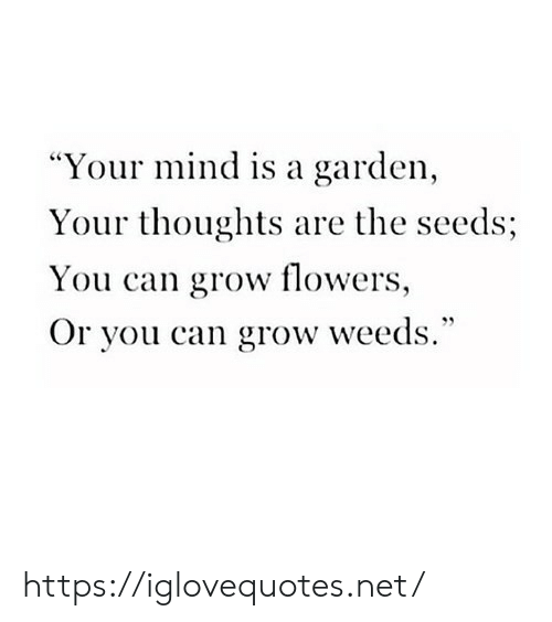"""Flowers, Mind, and Weeds: """"Your mind is a garden,  Your thoughts are the seeds;  You can grow flowers,  Or you can grow weeds."""" https://iglovequotes.net/"""