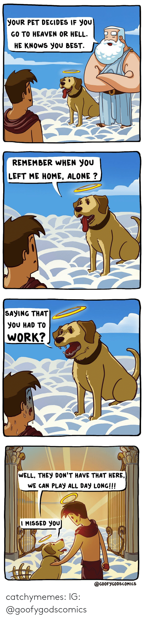 Remember When: YOUR PET DECIDES IF YOU  GO TO HEAVEN OR HELL.  HE KNOWS YOU BEST.   REMEMBER WHEN YOU  LEFT ME HOME, ALONE ?   SAYING THAT  YOU HAD TO  WORK?   WELL, THEY DON'T HAVE THAT HERE,  WE CAN PLAY ALL DAY LONG!!!  I MISSED YOU  @GOOFYGODSCOMICS catchymemes:  IG: @goofygodscomics