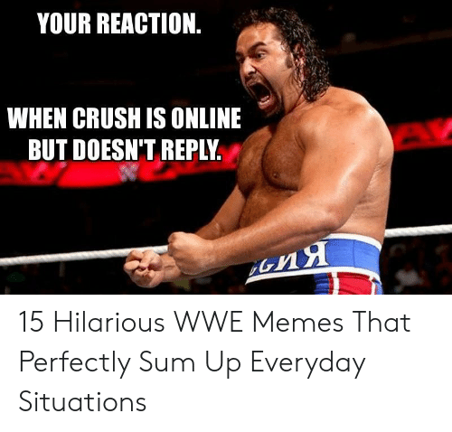 Crush, Memes, and World Wrestling Entertainment: YOUR REACTION  WHEN CRUSH IS ONLINE  BUT DOESN'T REPLY 15 Hilarious WWE Memes That Perfectly Sum Up Everyday Situations