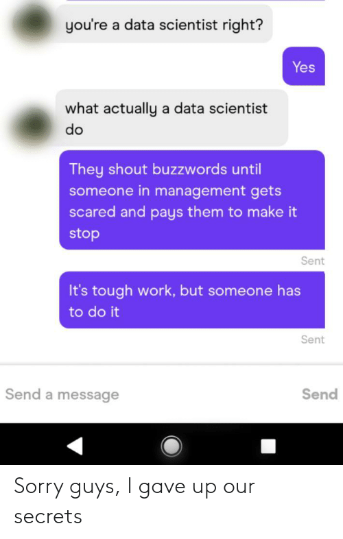 secrets: you're a data scientist right?  Yes  what actually a data scientist  do  They shout buzzwords until  someone in management gets  scared and pays them to make it  stop  Sent  It's tough work, but someone has  to do it  Sent  Send a message  Send Sorry guys, I gave up our secrets