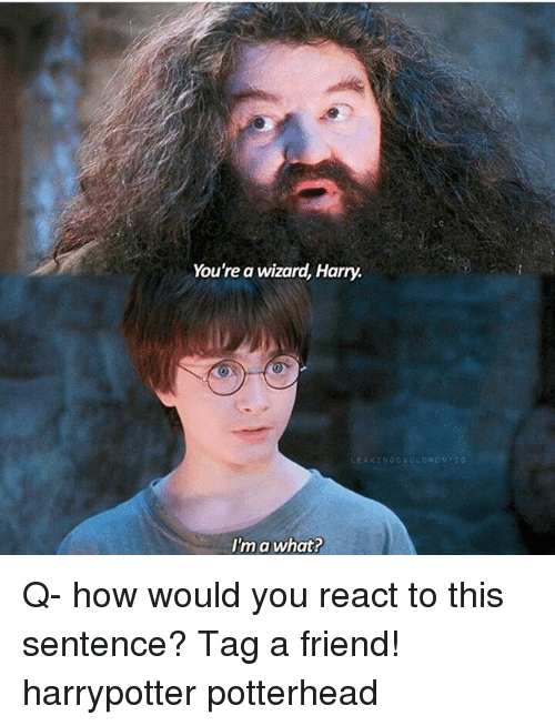 25 best memes about youre a wizard harry youre a wizard