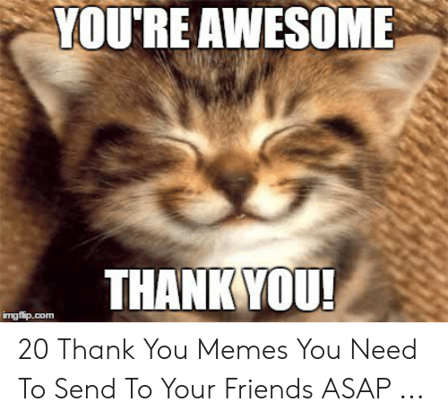 25 Best Memes About Thankful For You Meme Thankful For You Memes