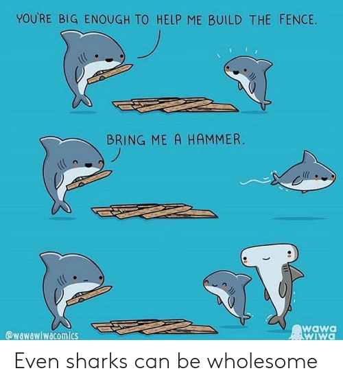 Help, Sharks, and Wawa: YOURE BIG ENOUGH TO HELP ME BUILD THE FENCIE  BRING ME A HAMMER.  @wawawiwacomics  wawa  wIWa Even sharks can be wholesome