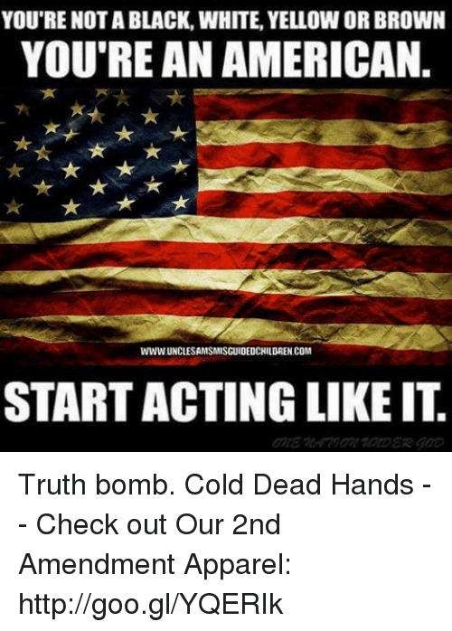 Truth Bomb: YOU'RE NOT A BLACK, WHITE, YELLOW OR BROWN  YOU'RE AN AMERICAN.  WWW UNCLESAMSMISGUIDEDCHILDREN COM  START ACTING LIKE IT Truth bomb. Cold Dead Hands -- Check out Our 2nd Amendment Apparel: http://goo.gl/YQERIk