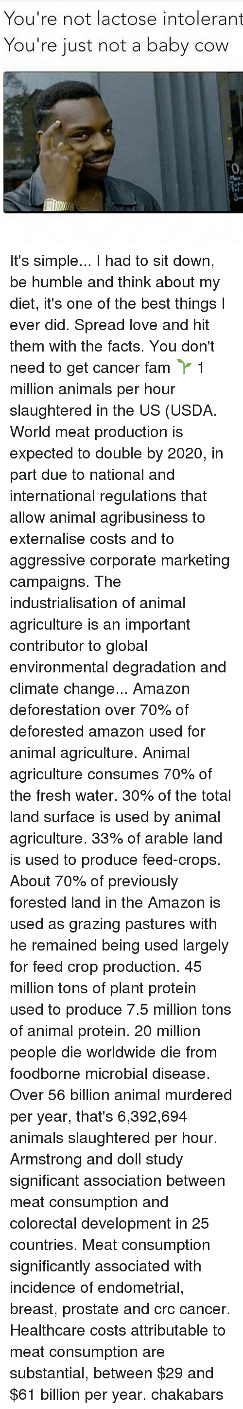 Amazon, Animals, and Facts: You're not lactose intolerant  You're just not a baby cow  0a It's simple... I had to sit down, be humble and think about my diet, it's one of the best things I ever did. Spread love and hit them with the facts. You don't need to get cancer fam 🌱 1 million animals per hour slaughtered in the US (USDA. World meat production is expected to double by 2020, in part due to national and international regulations that allow animal agribusiness to externalise costs and to aggressive corporate marketing campaigns. The industrialisation of animal agriculture is an important contributor to global environmental degradation and climate change... Amazon deforestation over 70% of deforested amazon used for animal agriculture. Animal agriculture consumes 70% of the fresh water. 30% of the total land surface is used by animal agriculture. 33% of arable land is used to produce feed-crops. About 70% of previously forested land in the Amazon is used as grazing pastures with he remained being used largely for feed crop production. 45 million tons of plant protein used to produce 7.5 million tons of animal protein. 20 million people die worldwide die from foodborne microbial disease. Over 56 billion animal murdered per year, that's 6,392,694 animals slaughtered per hour. Armstrong and doll study significant association between meat consumption and colorectal development in 25 countries. Meat consumption significantly associated with incidence of endometrial, breast, prostate and crc cancer. Healthcare costs attributable to meat consumption are substantial, between $29 and $61 billion per year. chakabars