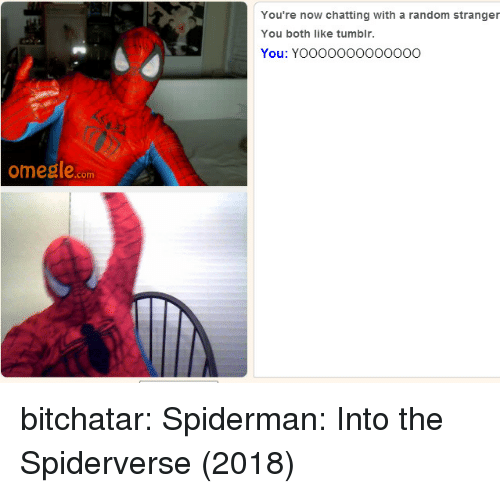 Omegle, Target, and Tumblr: You're now chatting with a random stranger  You both like tumblr.  You: YOOOOO0OOOoO0O  omegle.com bitchatar: Spiderman: Into the Spiderverse (2018)