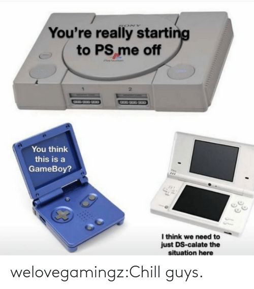 You Think: You're really starting  to PS me off  SONY  Phay ar  You think  this is a  GameBoy?  I think we need to  just DS-calate the  situation here welovegamingz:Chill guys.