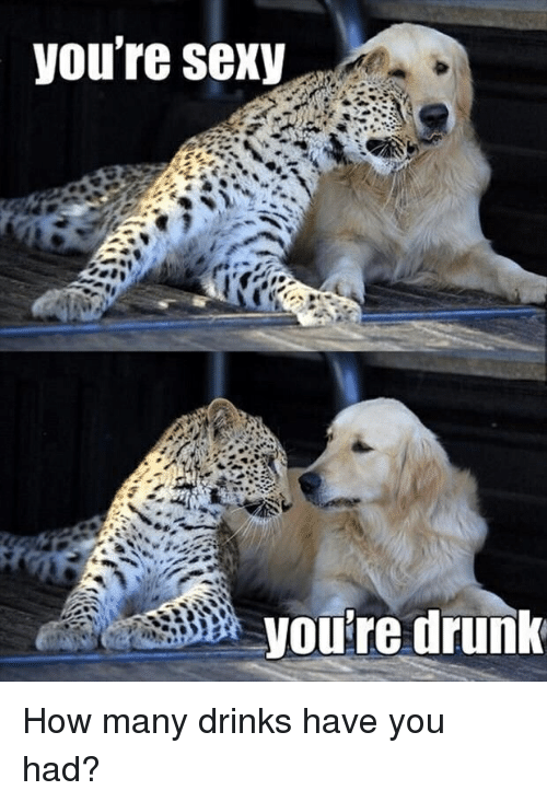 Sexying: you're sexy  you're drunk How many drinks have you had?
