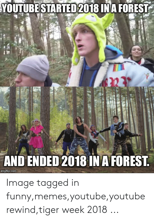 Funny Memes Youtube: YOUTUBE STARTED 2018 INA FOREST  AND ENDED 2018 IN A FOREST  imgflip.com Image tagged in funny,memes,youtube,youtube rewind,tiger week 2018 ...