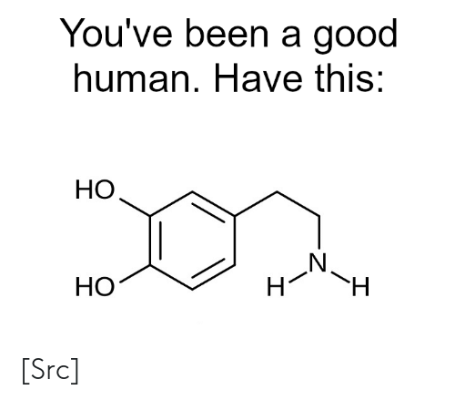 Reddit, Good, and Been: You've been a good  hu :  man. Have this  HO  HO [Src]
