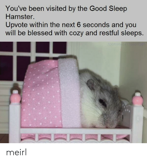 cozy: You've been visited by the Good Sleep  Hamster.  Upvote within the next 6 seconds and you  will be blessed with cozy and restful sleeps. meirl