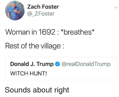 Trump, The Village, and Witch: Zach Foster  _ZFoster  Woman in 1692: *breathes*  Rest of the village:  Donald J. Trump @realDonaldTrump  WITCH HUNT! Sounds about right