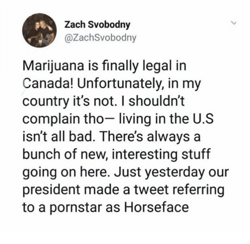 Bad, Canada, and Marijuana: Zach Svobodny  @ZachSvobodny  Marijuana is finally legal in  Canada! Unfortunately, in my  country it's not. I shouldn't  complain tho- living in the U.S  isn't all bad. There's always a  bunch of new, interesting stuf  going on here. Just yesterday our  president made a tweet referring  to a pornstar as Horseface