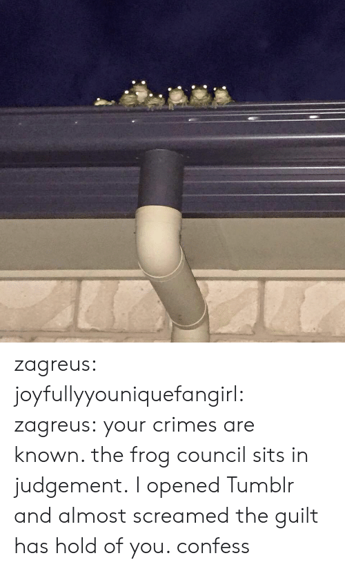 Sits: zagreus: joyfullyyouniquefangirl:  zagreus:    your crimes are known. the frog council sits in judgement. I opened Tumblr and almost screamed  the guilt has hold of you. confess