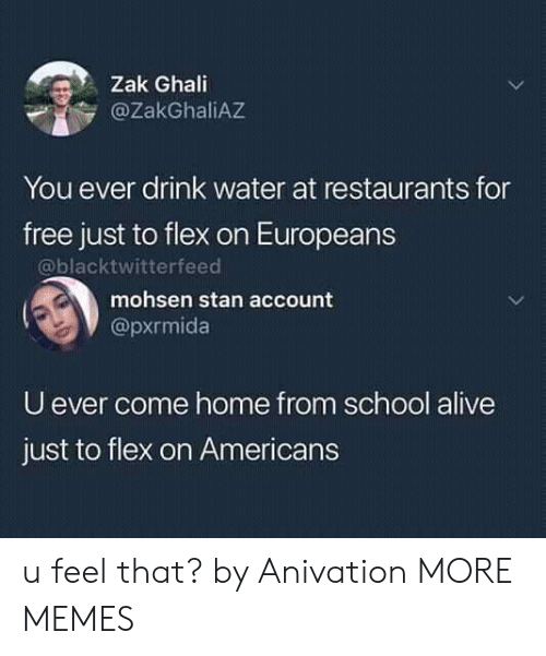 Alive, Dank, and Flexing: Zak Ghali  @ZakGhaliAZ  You ever drink water at restaurants for  free just to flex on Europeans  @blacktwitterfeed  mohsen stan account  @pxrmida  U ever come home from school alive  just to flex on Americans u feel that? by Anivation MORE MEMES