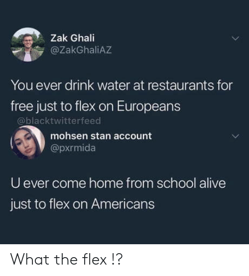Restaurants: Zak Ghali  @ZakGhaliAZ  You ever drink water at restaurants for  free just to flex on Europeans  @blacktwitterfeed  mohsen stan account  @pxrmida  U ever come home from school alive  just to flex on Americans What the flex !?