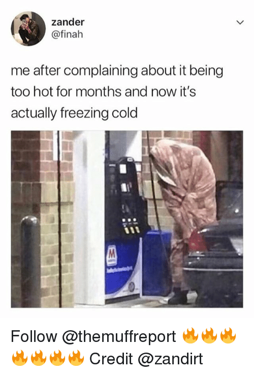 Freezing Cold: zander  @finah  me after complaining about it being  too hot for months and now it's  actually freezing cold Follow @themuffreport 🔥🔥🔥🔥🔥🔥🔥 Credit @zandirt