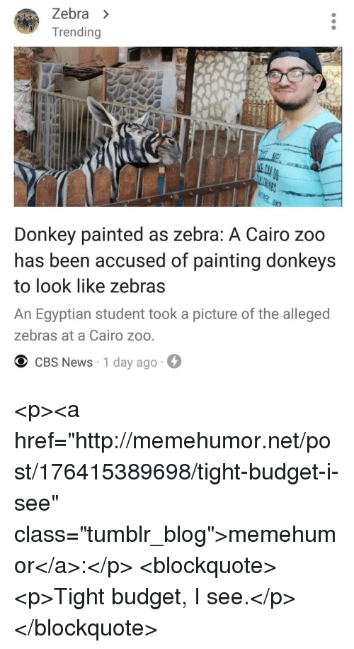 """zebra: Zebra >  Trending  Donkey painted as zebra: A Cairo zoo  has been accused of painting donkeys  to look like zebras  An Egyptian student took a picture of the alleged  zebras at a Cairo zoo  O CBS News 1 day ago <p><a href=""""http://memehumor.net/post/176415389698/tight-budget-i-see"""" class=""""tumblr_blog"""">memehumor</a>:</p>  <blockquote><p>Tight budget, I see.</p></blockquote>"""